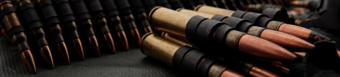 Заходи безпеки при поводженні з вогнепальною зброєю під час проведення учбово-тренувальних і спортивних стрільб в тирах та на полігонах.